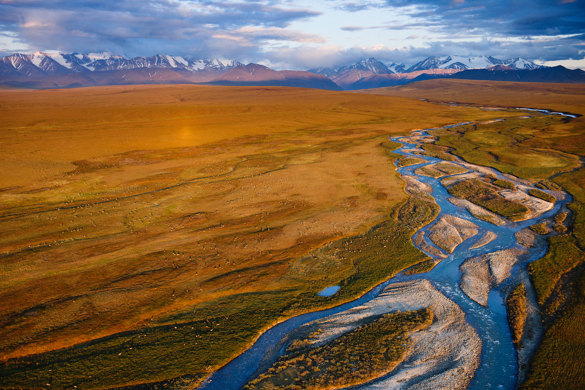 A refuge in the arctic - ANWR