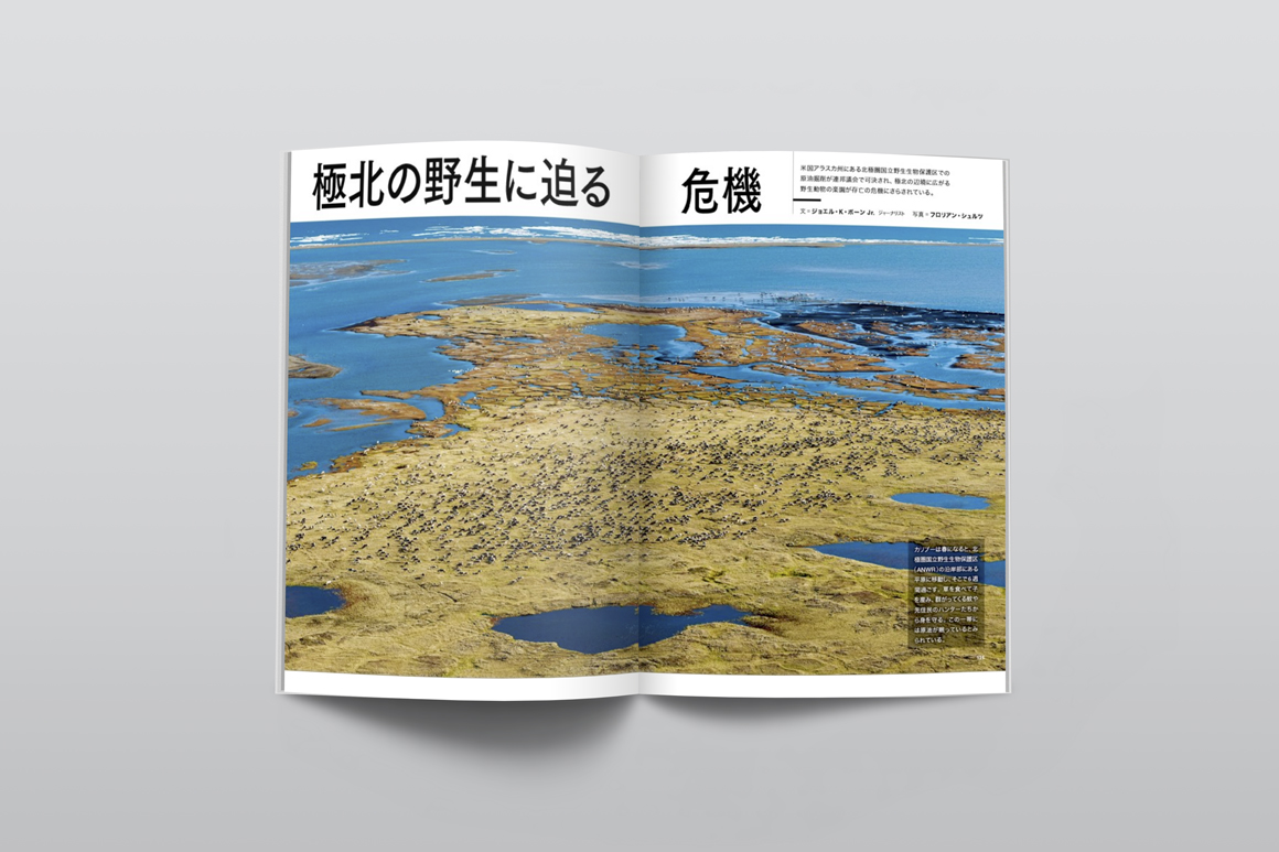 NG_Magazine_Japan_06_2018_Mock.jpg